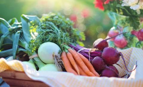 KuBa Foodsharing Schnibbelparty